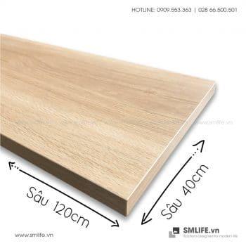Kệ gỗ Railshelf 40x120cm