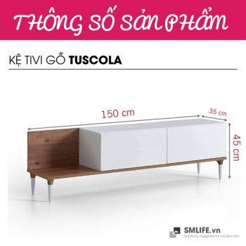_0000_Kệ tivi gỗ hiện đại Tuscola (12)