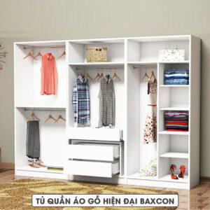 Tủ quần áo gỗ hiện đại Baxcon (1.1)