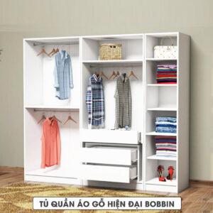 Tủ quần áo gỗ hiện đại Bobbin (1.1)