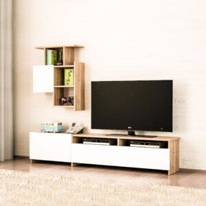 Kệ tivi gỗ hiện đại Tobio (1)